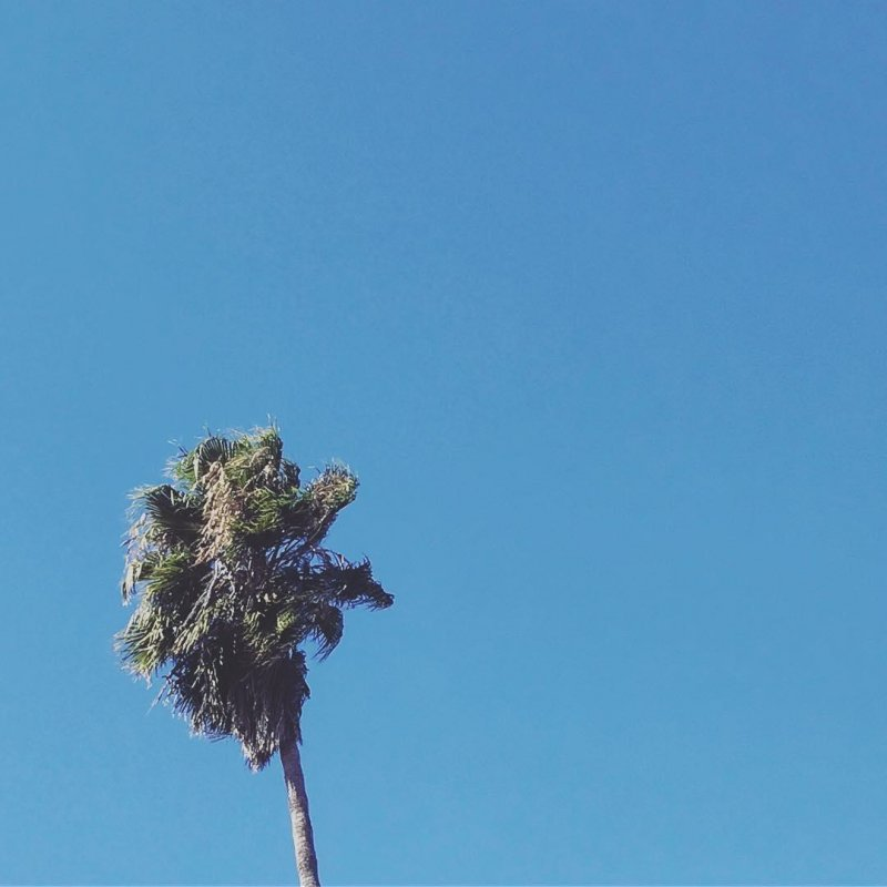 Good morning, California.