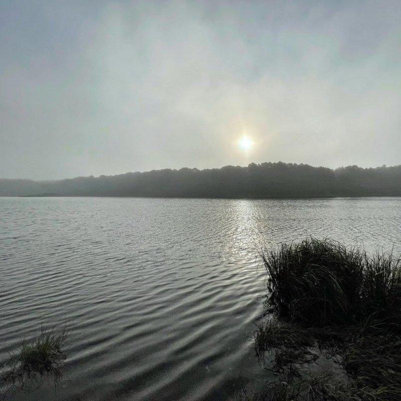 I awoke to a foggy morning.